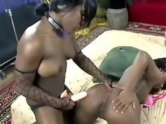 Sweet tasty lesbo pussies eaten out black lesbian porn