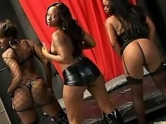 Saucy ebony dolls having fun in bed black lesbian porn